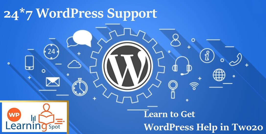 24*7 WordPress Support: Learn to Get WordPress Help in Two20